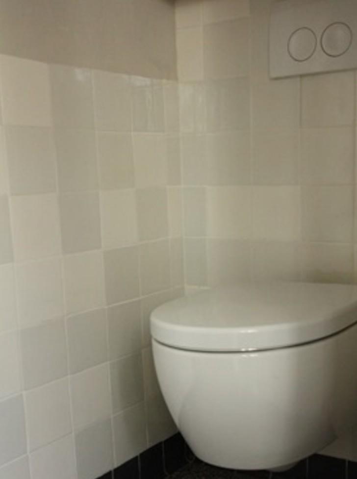 Friese witje steenbok grijsmix 13x13 aanbieding op=op €20 per m2 *Gratis hoektegels* -6948